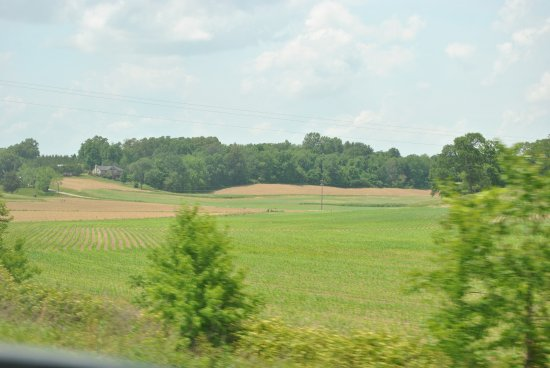 Agricultural fields, Hoosier, Indiana - Picture of Hoosier National