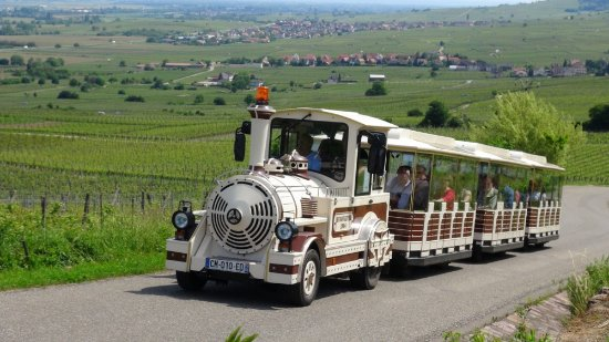 Le Train Gourmand du Vignoble