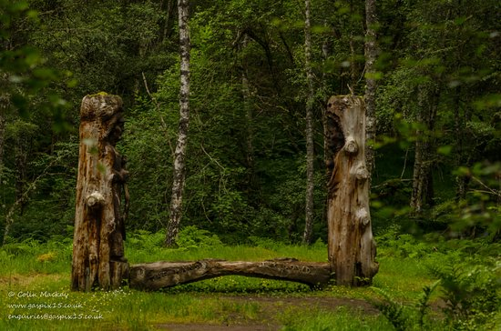 Kincraig, UK: Thought provoking sculptures, made from all natural materials.