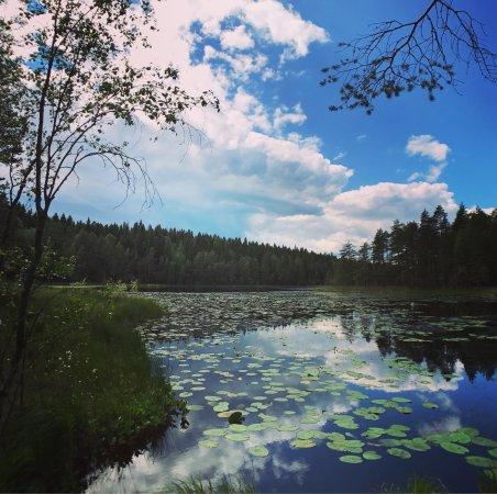Southern Finland, Finland: photo3.jpg