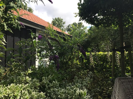 Vierhuizen, Países Bajos: Mooie tuin