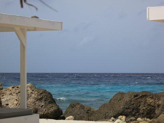Zest Mediterranean: Strand bij Zest