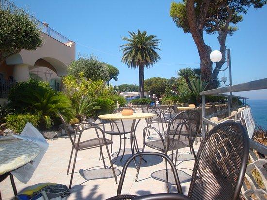Hotel Terme Cristallo Palace: La terrazza