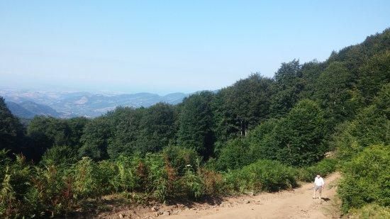 Nebiyan Mountain: Nebiyan Dağı