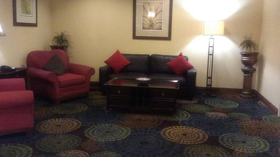 Holiday Inn Express Tampa Fairgrounds: Lobby