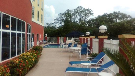 Foto de Holiday Inn Express Tampa Fairgrounds