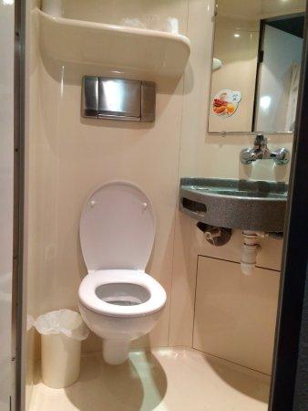 Massieux, France: Salle de bain et toilette concentré mais dans la chambre