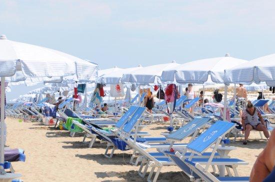 La spiaggia del romeo file molto larghe di ombrelloni e sabbia