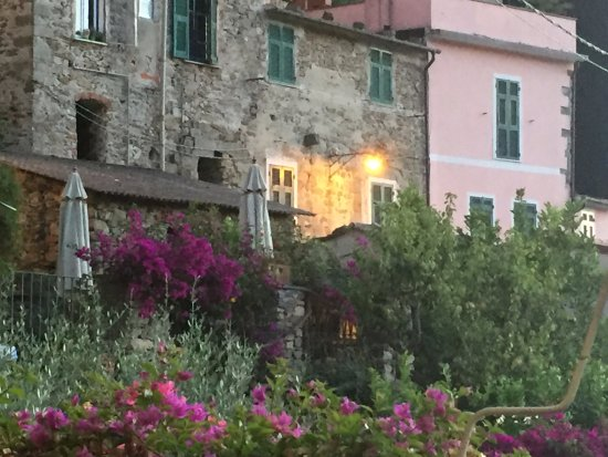Food and Sea: View of adjacent gardens and building of Corniglia
