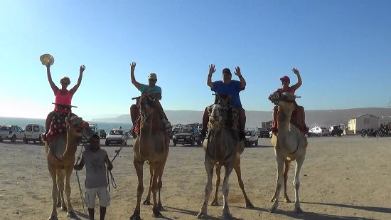 Agadir Excursion Tours - Day Tours