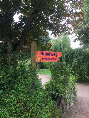 Mecklembourg-Poméranie occidentale, Allemagne : Vogelpark Marlow