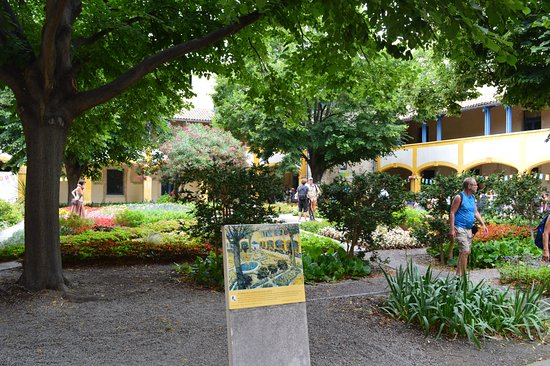 Van Gogh Walk: The Garden Of The Hospital In Arles