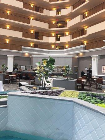 Hilton Chicago Oak Brook Suites: photo0.jpg