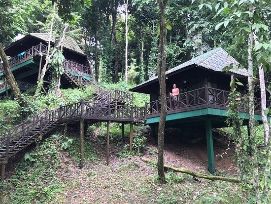 Tabin Wildlife Resort: photo0.jpg