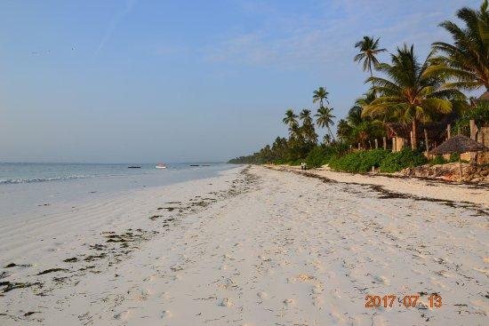 Zanzibar Retreat Hotel: Stranden med fin kritvit sand!