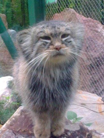 Lodz Zoo : Nasz Ulubieniec!