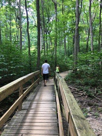 Eagle Creek Park: photo1.jpg