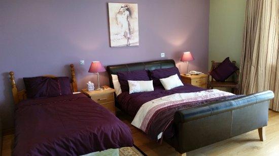 Cloonagulleen, Irlanda: Family Room ensuite