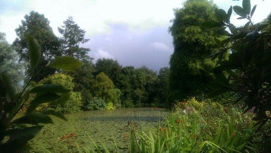 Tullow, Ireland: Altamont Gardens lake view