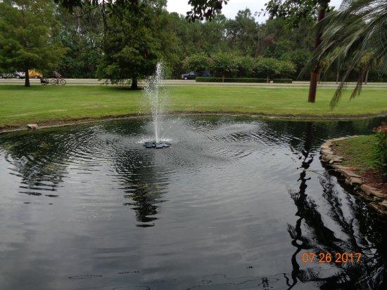 Legendary Golf: A pond