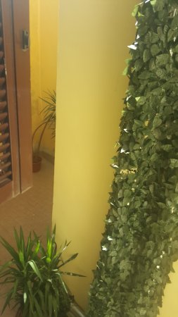 Hotel Smeraldo: View from 204