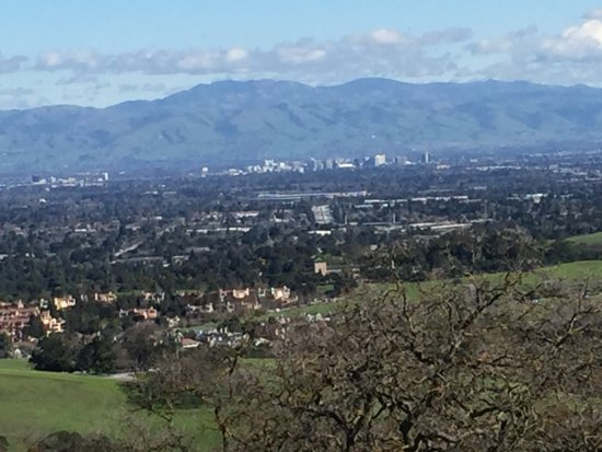 Los Altos Hills, CA: Downtown SJ on a clear day.