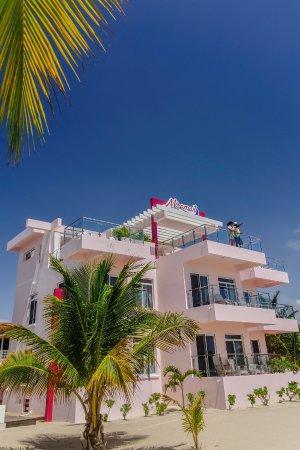 Miramar Apartments Photo