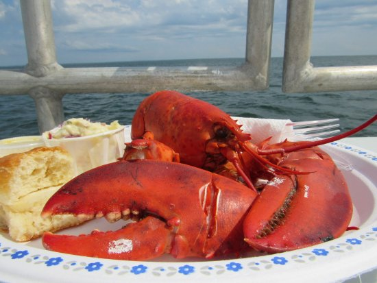 Шарлоттаун, Канада: Lobster Dinner cooked aboard the Fundy Cruiser