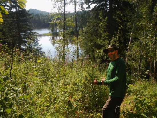 Rimbey, Canada: Along the hiking trail