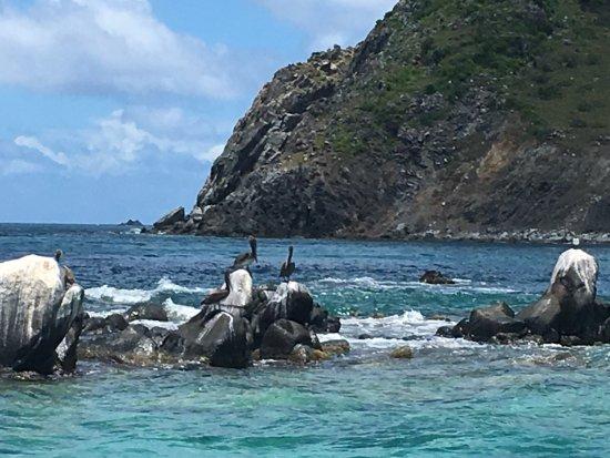 Captain Alan's Three Island Snorkeling Adventure: photo4.jpg