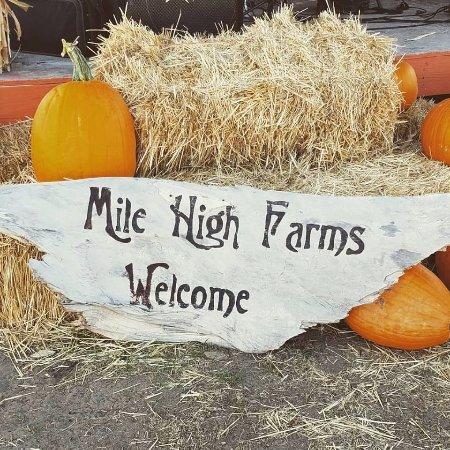 Mile High Farms