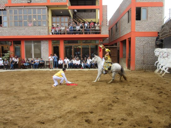 Lima Region, Peru: These horses are so graceful.