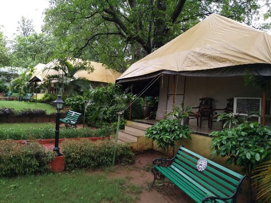 Champak Bungalow, Pachmarhi: photo2.jpg