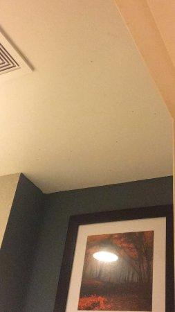 Quality Inn & Suites: spiders on the ceiling (make picture bigger if possible)