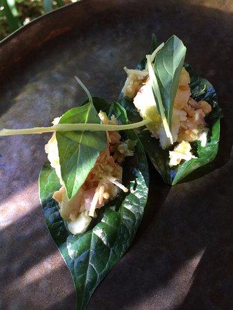 Yandina, Australien: betel leaf