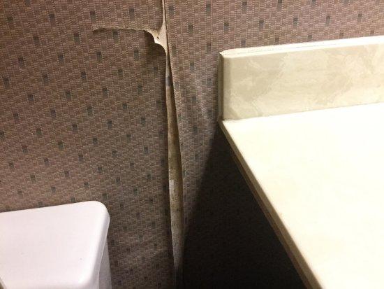 Chokoloskee, فلوريدا: Room n6...such a shame