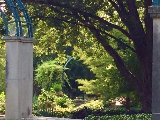 Fort Worth Botanic Garden : Beauty Everywhere