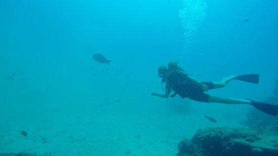 Drake Bay, Costa Rica: photo4.jpg