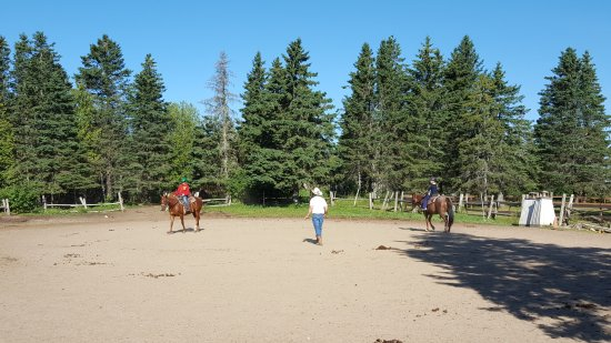 Carriage Hill Equestrian Center