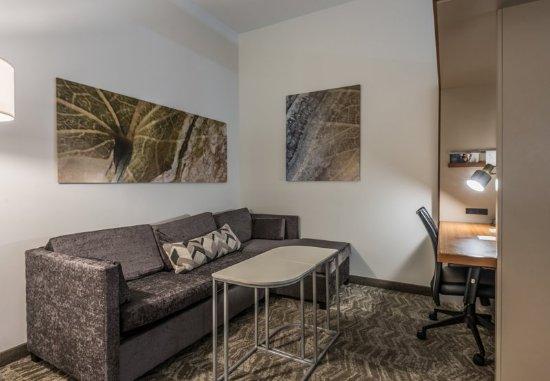 Statesboro, GA: Suite - Living Area