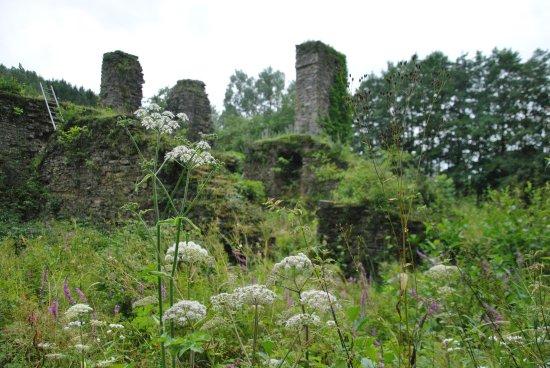 Lindlar, Alemania: Ruine Eibach