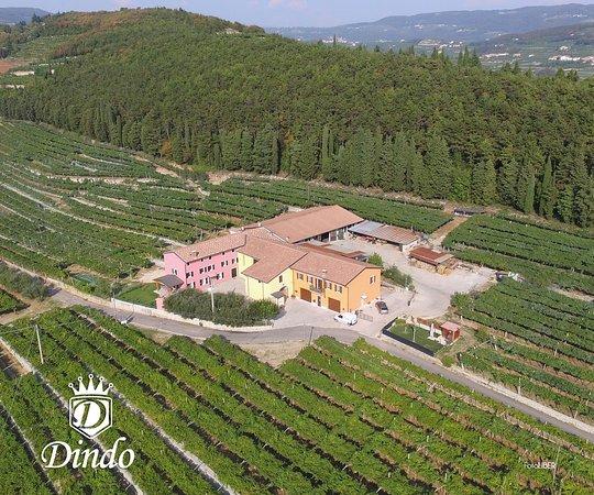 Azienda Agricola Dindo