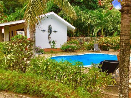 Calou Guest House Hotel : photo8.jpg
