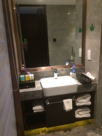 Jingjiang, จีน: The bathroom and myna bird in lobby store area.