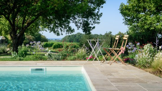 Les Esseintes, França: Our new 10m x 5m pool is surrounded by gardens and vineyards