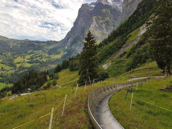 Grindelwald, Svizzera: IMG-20170729-WA0013_large.jpg