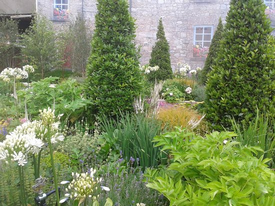 Dundrum, أيرلندا: More of the garden