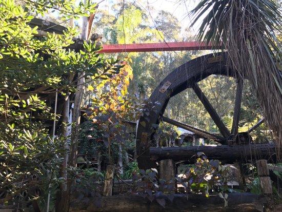 Mogo, Australia: photo7.jpg