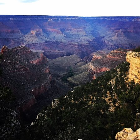Grand Canyon Mule Tours by Xanterra: photo4.jpg