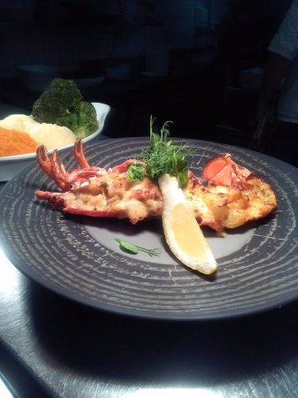 The Pikeman Bar - The Grand Hotel : Gratinated Lobster Thermidor